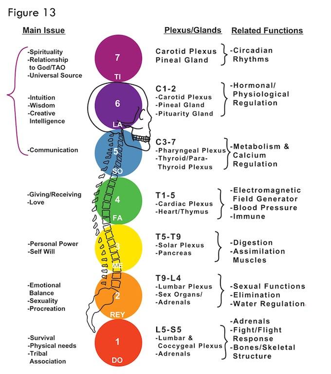KC Yoga Energy Anatomy