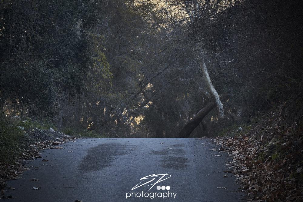 70D-(2017-01-16)-219-C1P Edit.jpg