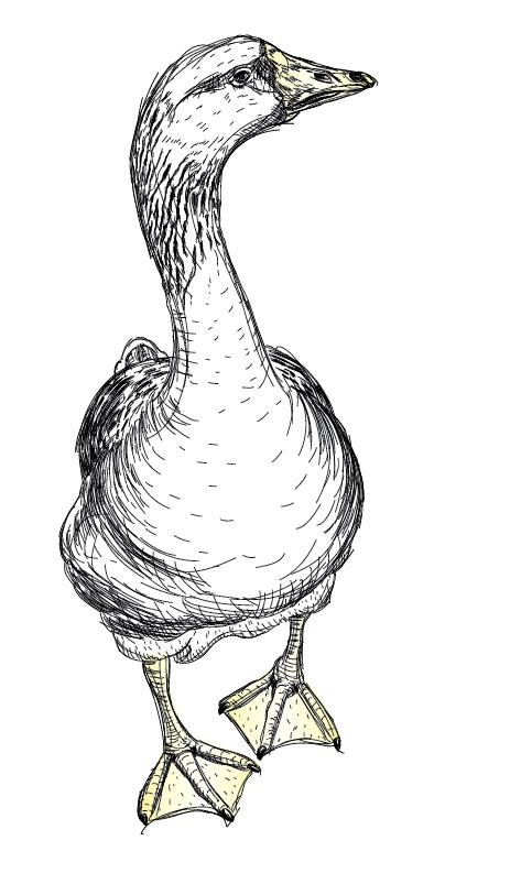 My Goosey Gander Logo.jpg