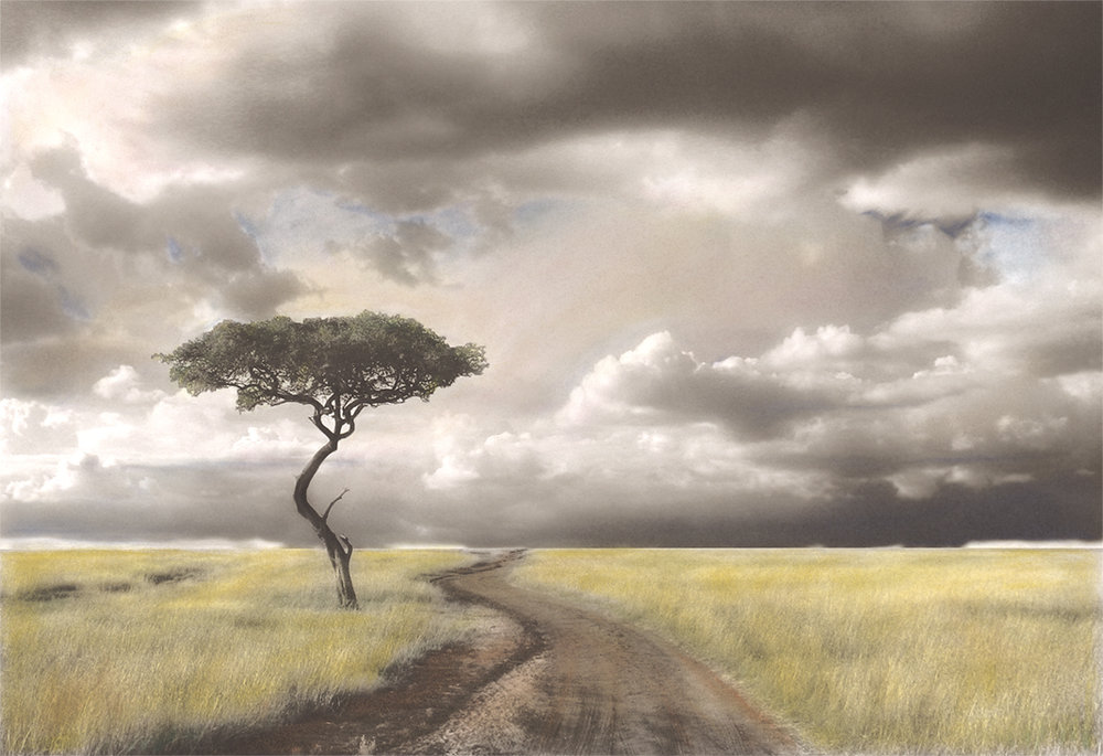 Lone Tree on the Masai Mara  For those who are new to my work, this is an old favorite. I took the original photograph on the Masai Mara in Kenya after completing my first mission trip serving those impacted by AIDs. Once back home I converted the photograph to black and white then handprinted it with pan-pastels using a technique shared with me by a dear friend. I've made several originals in various sizes over the years...exploring different color options. This image is available as a custom archival Giclee print in whatever size you desire. I've recently created a new original hand-painted version of this image, which will be featured at a Membership Medley Show at Blue Line Arts Gallery in Roseville later this summer:  https://www.bluelinearts.org/ . Contact me for more info!