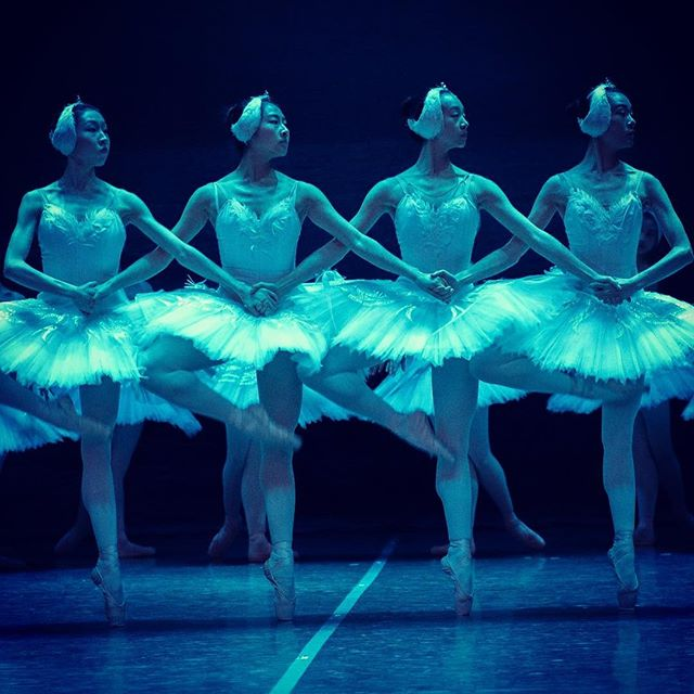 Melbourne, tonight we celebrate the opening night of SWAN LAKE at the glorious Regent Theatre!  Don't miss your chance to see Tchaikovsky's classical ballet in its most grand form. Only 4 performances remaining!  Photo Credit: Glen Wilson