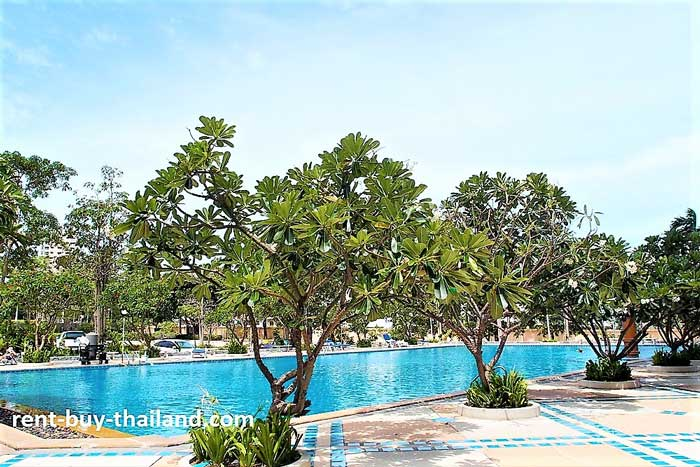 View Talay 5 Swimming Pool