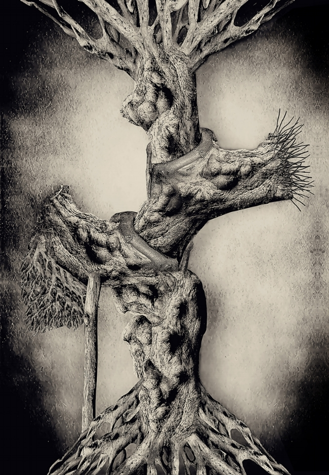 Tree of (my life), Mohammed Alanezi, Photography, digital print on canvas, 122x85cm