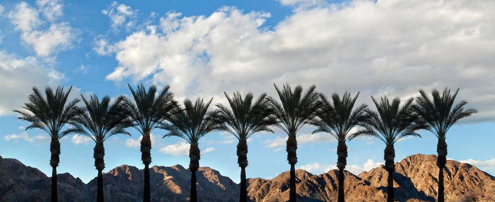 9 Palms.jpg
