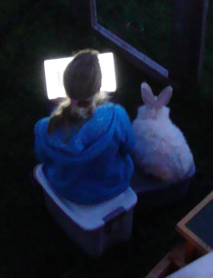 This is Peanut, my old rabbit. - I used to own a French Angora. He was super fluffy and probably shouldn't have been kept outside, especially in the summer. But due to the many situations I came across with him, I would have found a rabbit app very useful at the time. He also enjoyed watching Youtube videos with me.