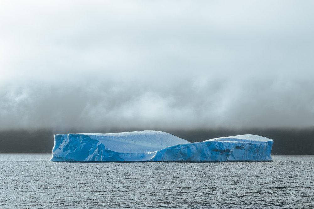 Foggy Iceberg