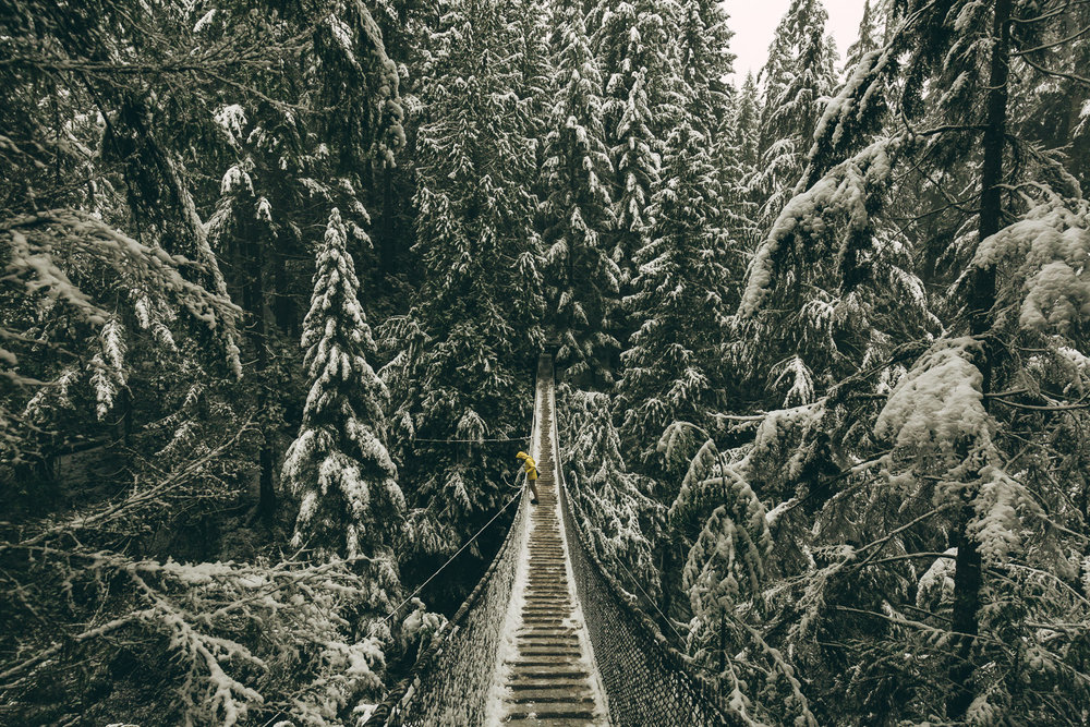 Lynn Canyon in Winter