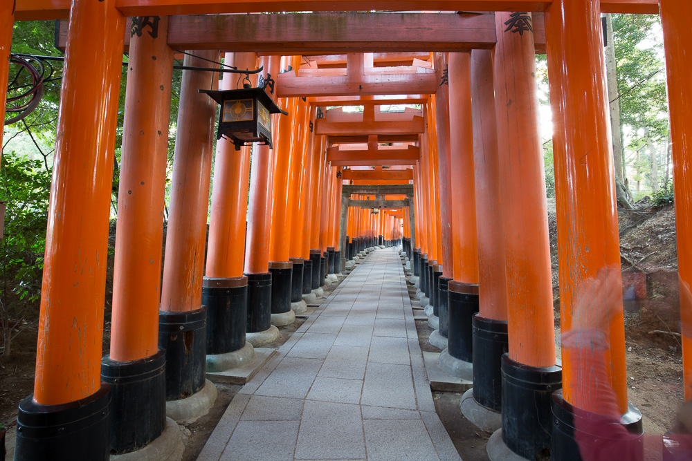 The path at Fushimi Inari Shrine is lined by thousands of orange torii gates