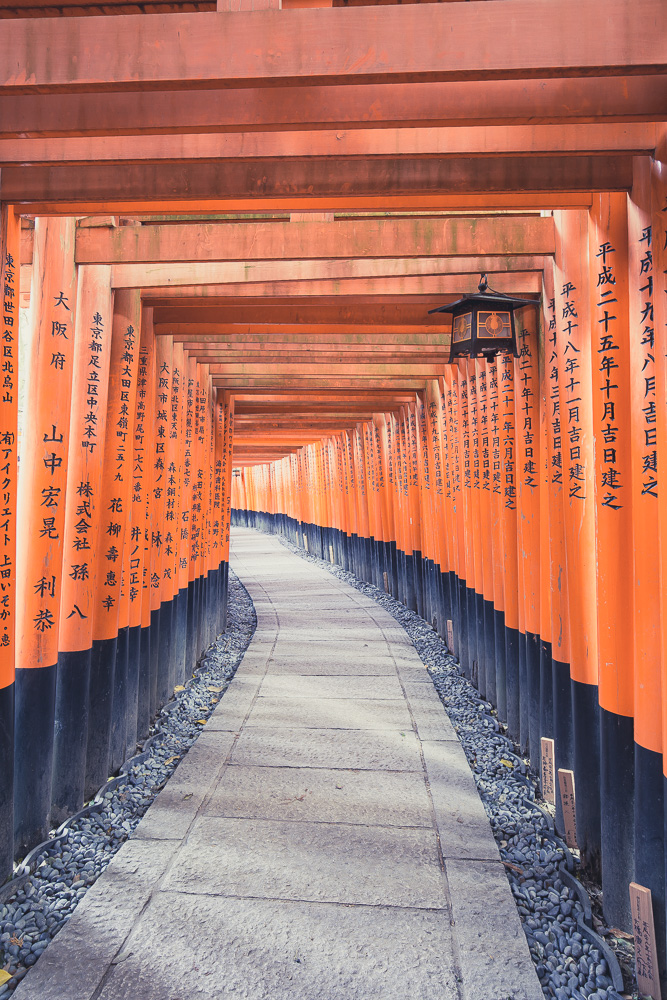 Torii Gate Donors