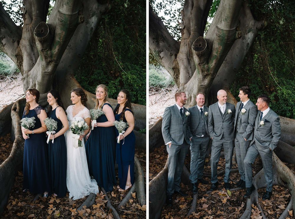 66-perth wedding tree mounts bay road photo.jpg