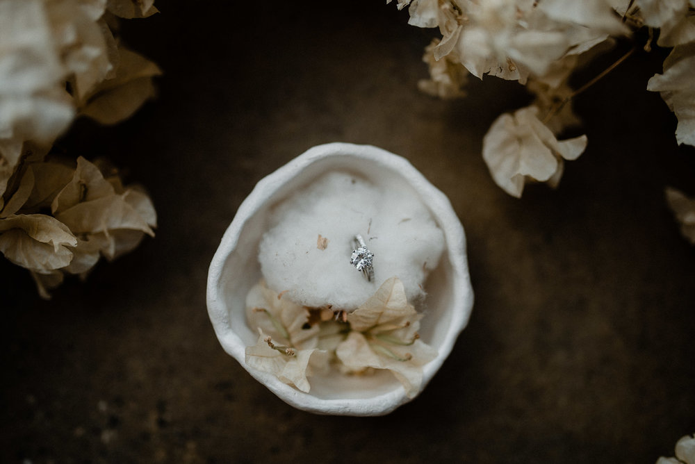perth-botanical-warehouse-wedding-2.JPG