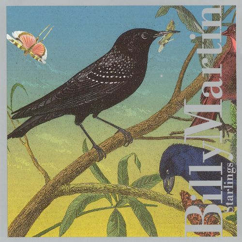 Billy Martin Starlings [2006]
