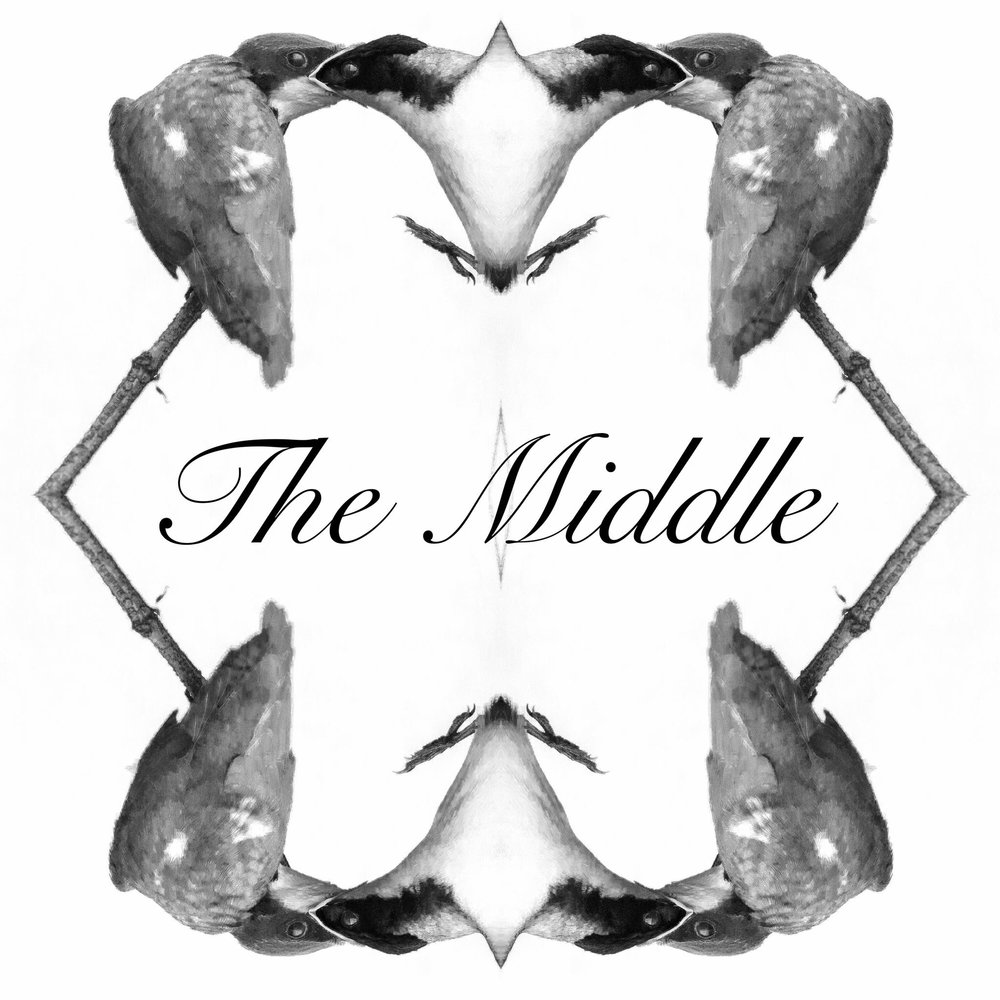 Andrew Altman The Middle {single} [2017]