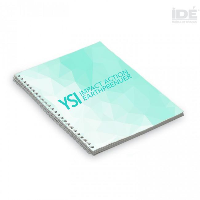 YSI 2017 -