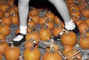 Pumpkin Patch Feet