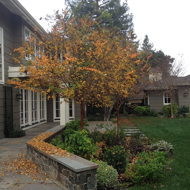 We love fall!  #landscaping #landscapers #fall #autumn #gorgeous #backyards