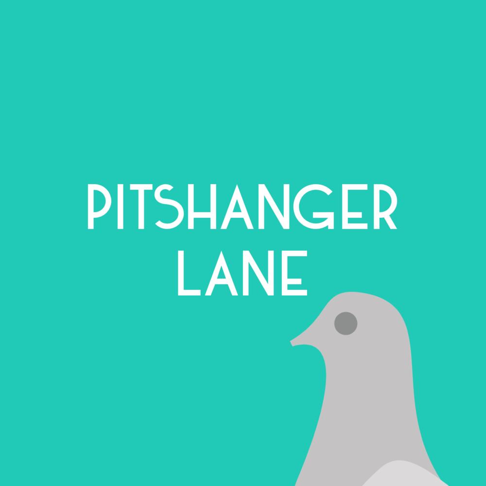 promo-pitshanger.png