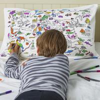 Colour In World Map Pillow Case Mooch An Award Winning