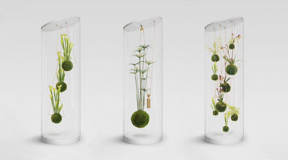 WeSmellTheRain-Installation-PlantCylinderCollection-LR-RGB-ƒ.jpg