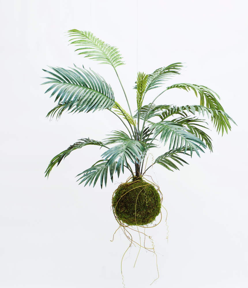 COMING SOON  King Size Faux Kokedama