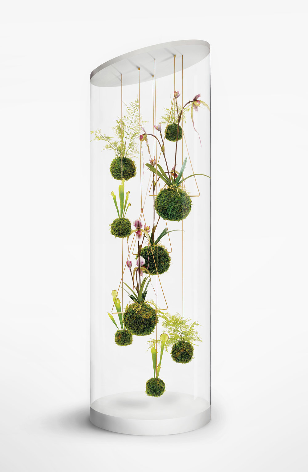 WeSmellTheRain-Installation-PlantCylinderCollection-HR-RGB-ƒ-smler.jpg
