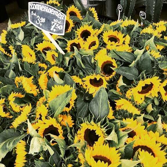 Sunflowers! #flowermarketamsterdam #amsterdam