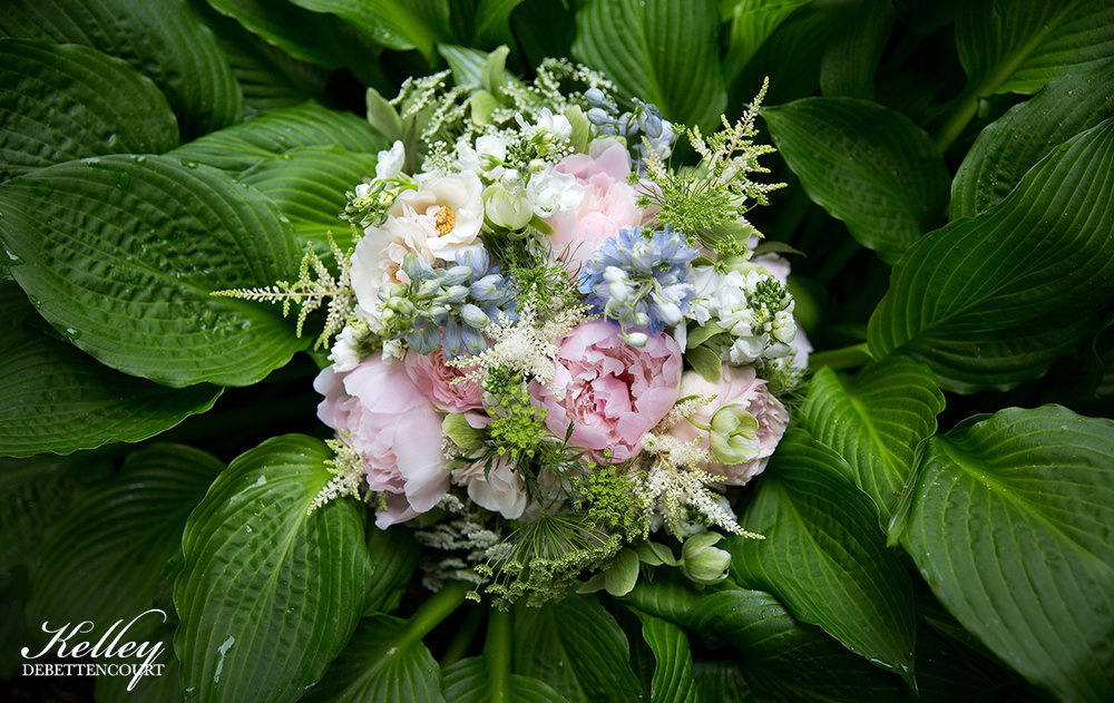 FlowersLeaves_KelleyDeBettencourt_4453.jpg