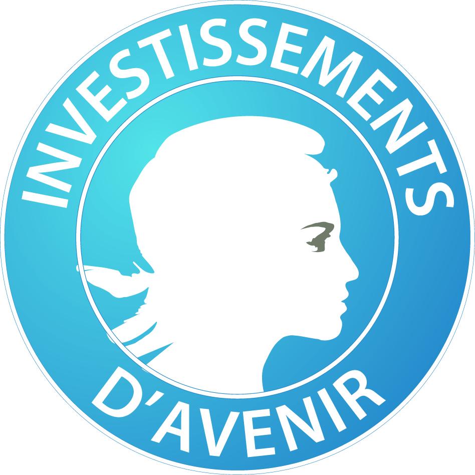 investissements_d-avenir_-_logo.jpg