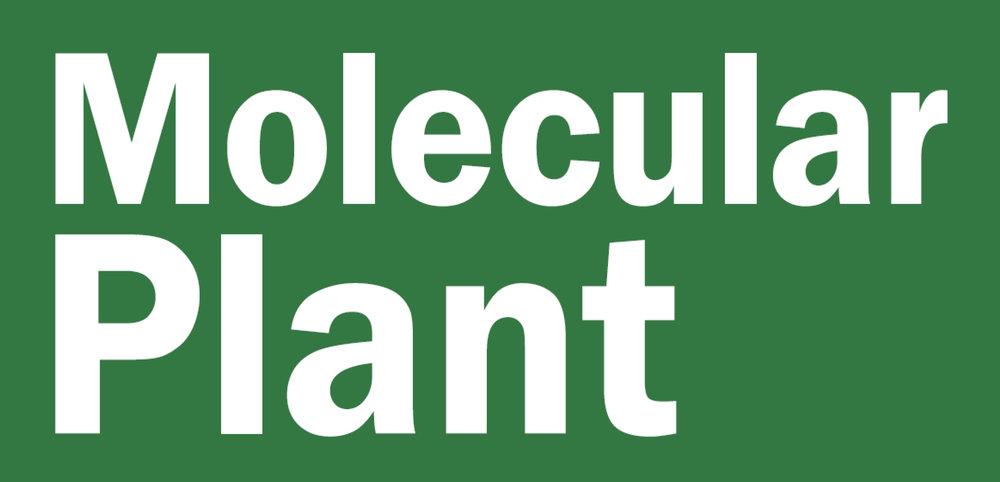 Molecular plant.jpg