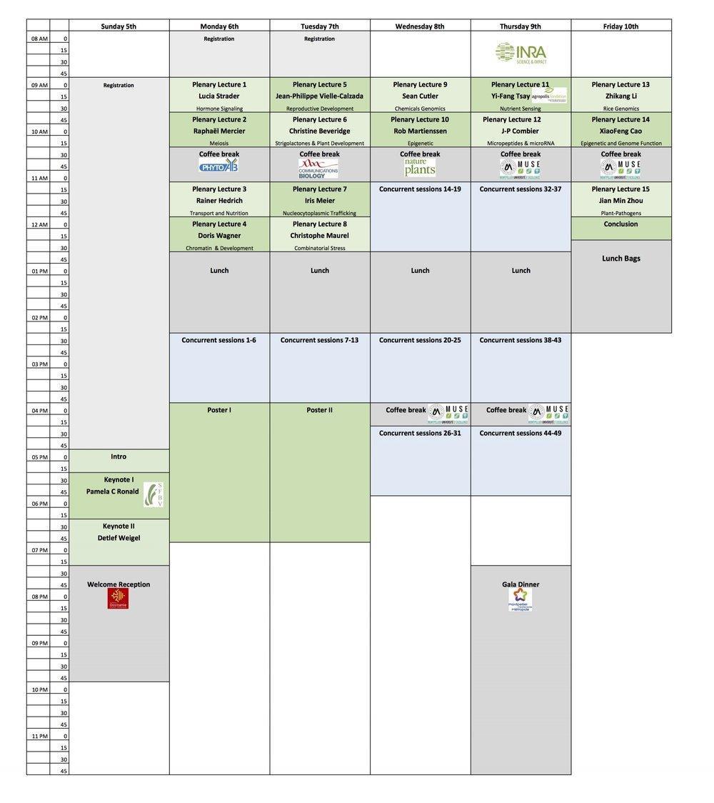 Program Summary Pocket guide(2)(1).jpg