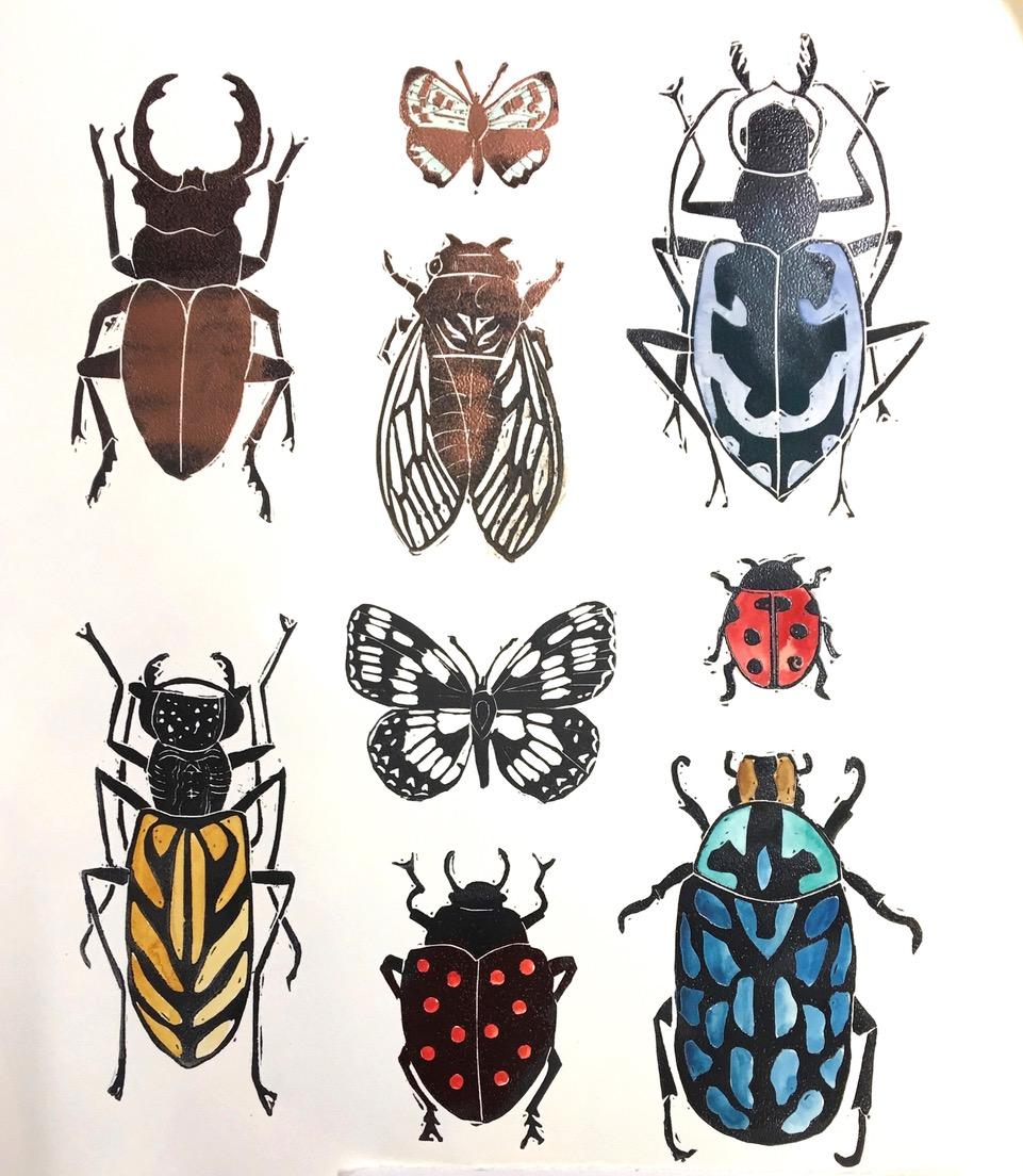 coleoptera VI.jpeg