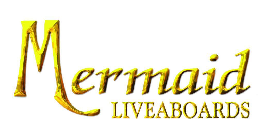 Mermaid Logo Hi Res.jpg