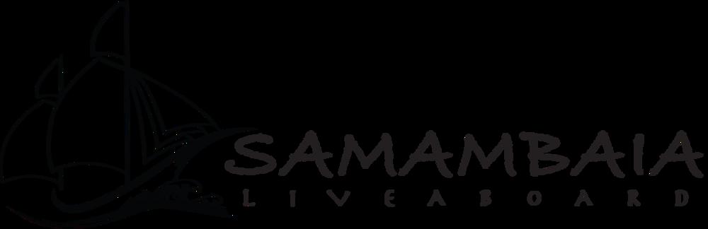 Samambaia.png