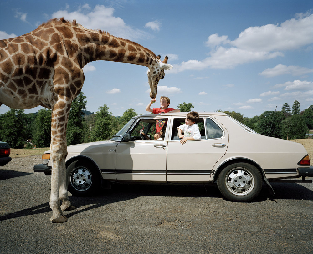 Longleat Safari Park, Wiltshire, England, 1994.© Martin Parr/Magnum Photos