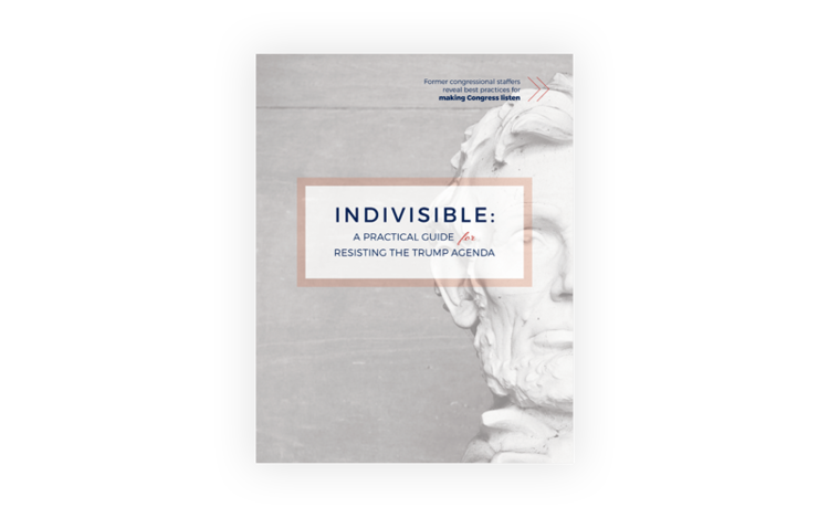 Click to access the Indivisible Guide, written by former congressional staffers.