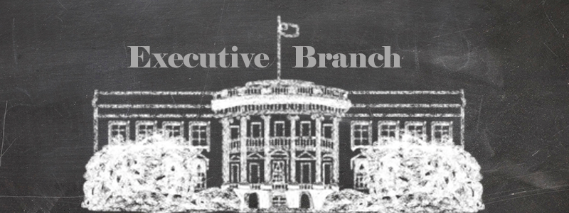 executive-branch.png