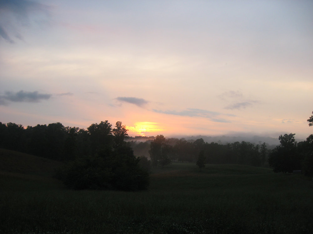evening pasture 2.jpg