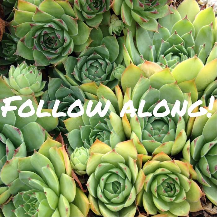 follow--e1409252027693.jpg