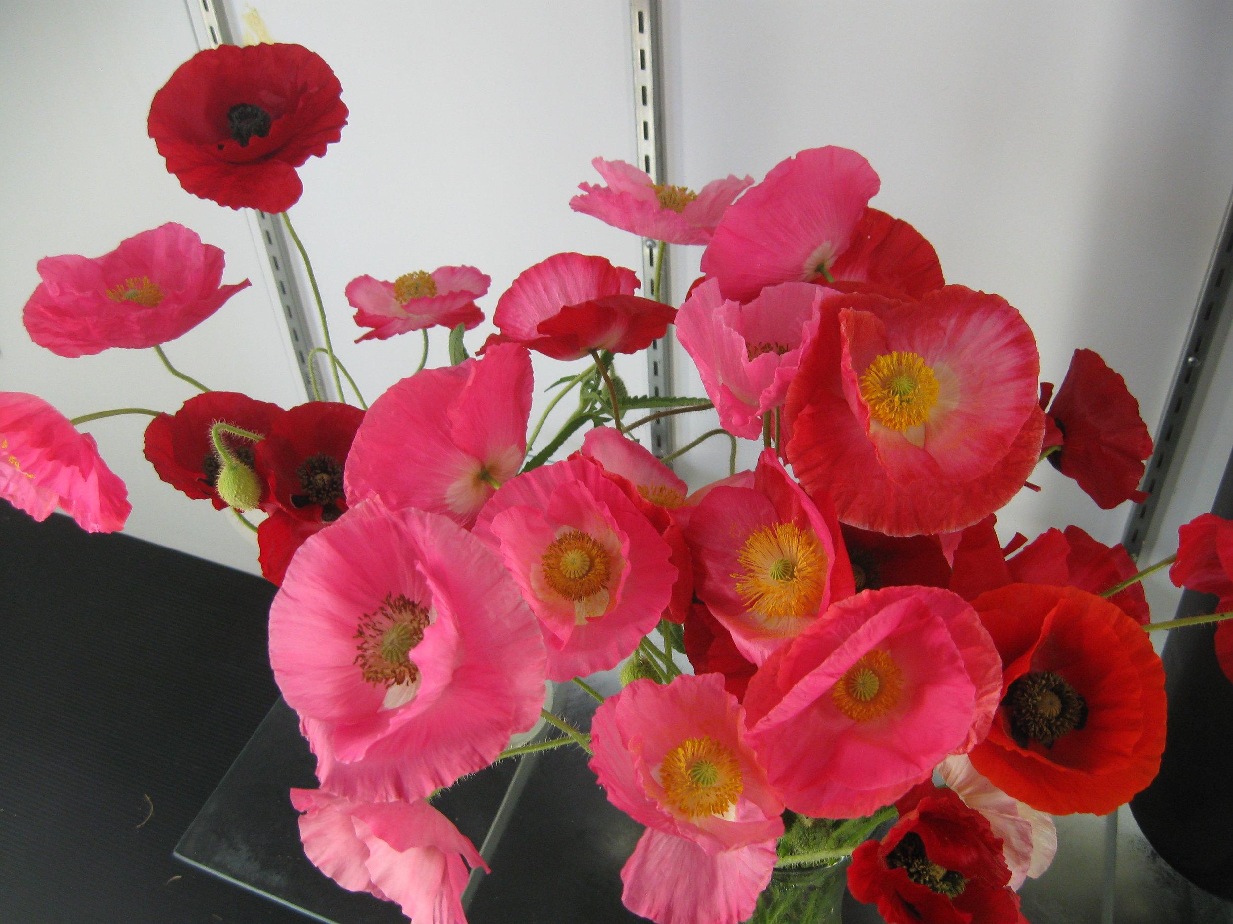 Spring Summer 2012 122