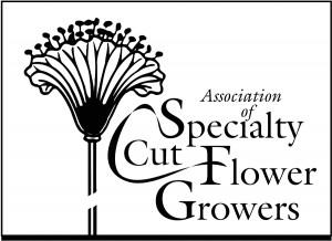 ASCFG-logo-BEST-1-300x218.jpg