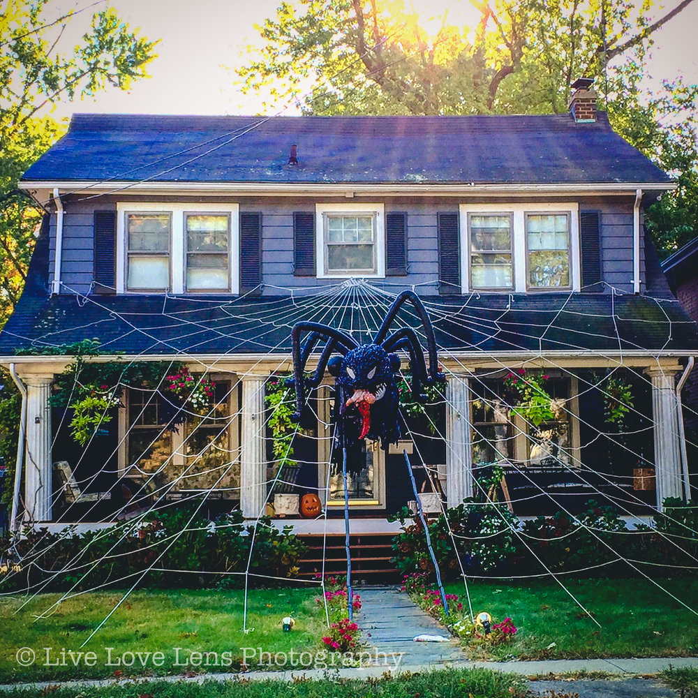 The famous spider house of Maplewood! One year the spider was eating Trump. It was a beloved by many, to say the least. Other times the spider has had a baby dangling from its mouth. It's weird but people love it.