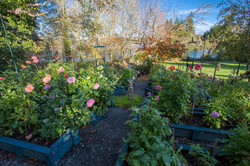 7d Fenced Garden.jpg