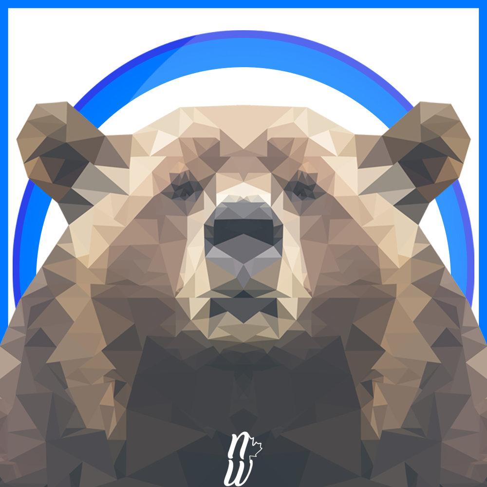 Nw-13-Bear.jpg