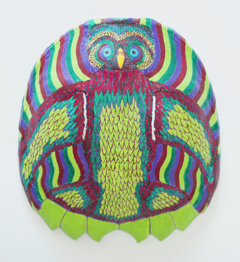 TROPICAL OWL TURTLE MASK 2