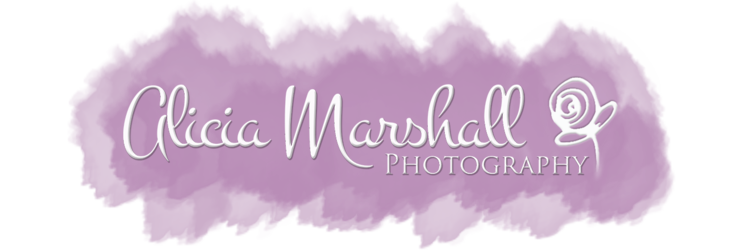 Alicia Marshall Photography