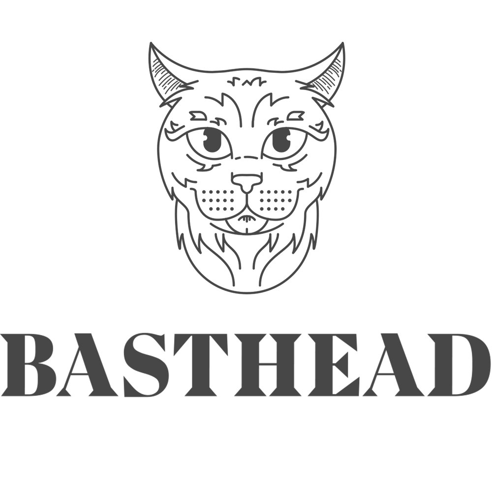 Basthead Animation-Design Studio