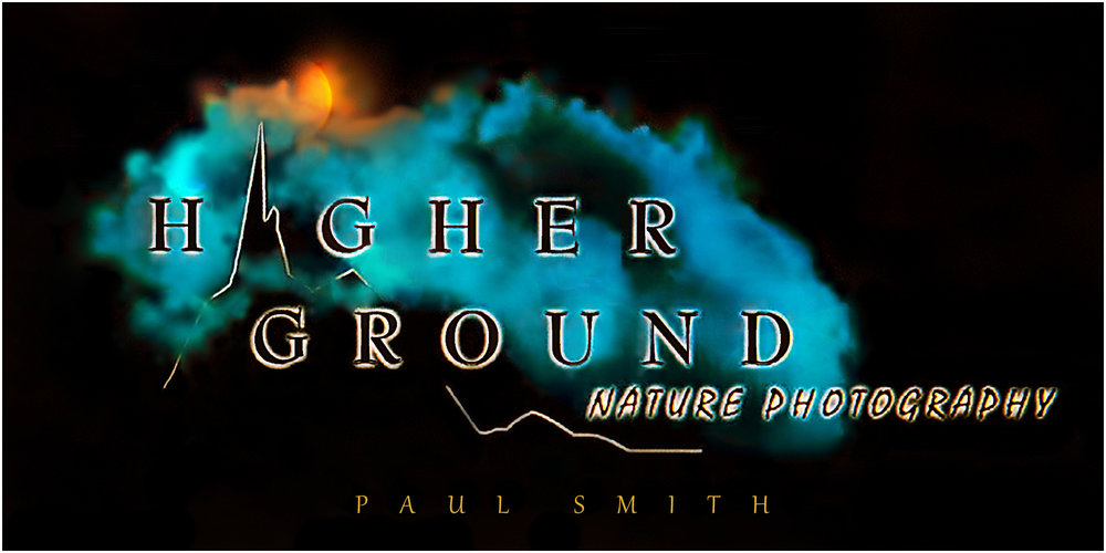 Higher Ground Nature Photography