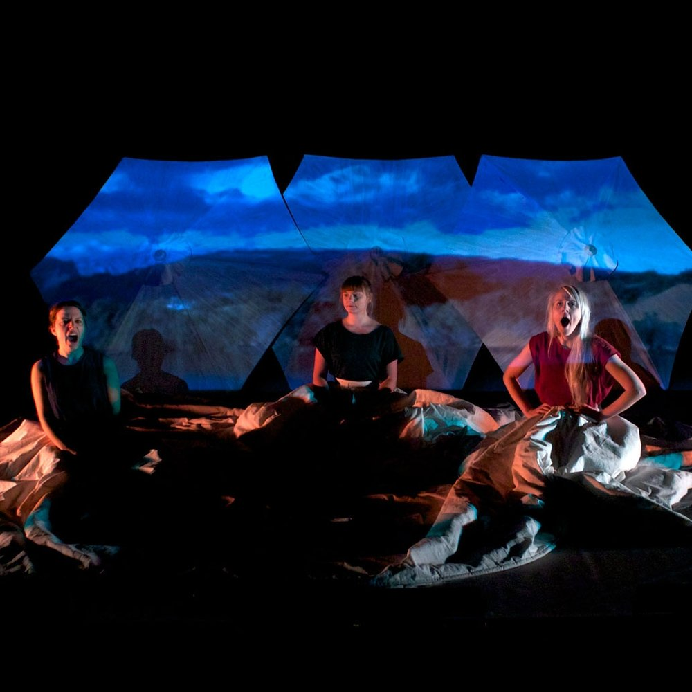 Radikal vänskap (2014)  Seamstress/assistant Theatre, PotatoPotato Scenkonstkollektiv.