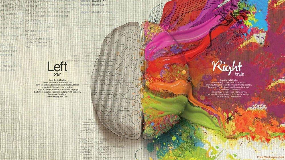 left-brain-and-right-brain.jpg