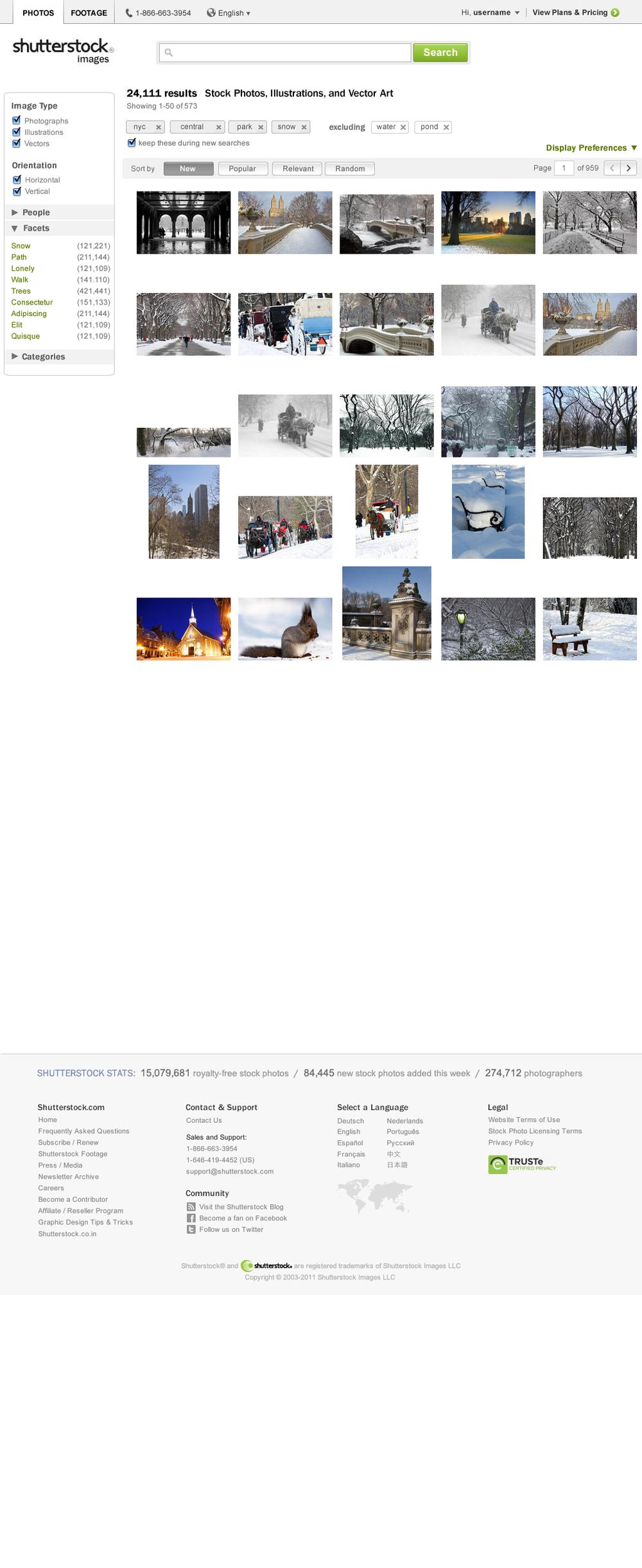 Central Park Snow.png